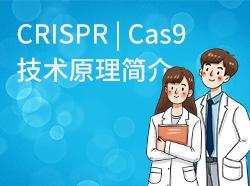 CRISPR | Cas9技术原理简介