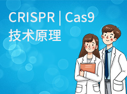 CRISPR | Cas9技术原理