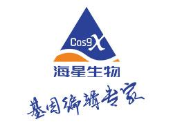 Cas9X™基因转录激活/抑制细胞株