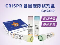 CRISPR基因敲除试剂盒